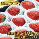 甘すぎてマツコびっくりの苺「まりひめ」をお取り寄せしよう!