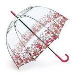 エリザベス女王愛用バードケージのビニール傘をマツコ絶賛!折り畳みも!