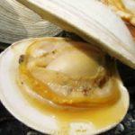 驚くうまさ☆ホンビノス貝!千葉県の新しい名物が青空レストランで紹介!
