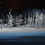 冬の美瑛ブルー情報まとめ☆夜の青い池・しらひげの滝で絶景が見逃すな!